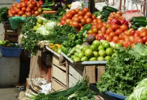 GHANAVEG HORTICULTURAL TRADE MISSION TO GHANA